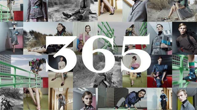 365 Campaign