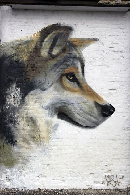 wolf on painted brick