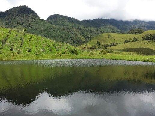Paisajes en el lago de pesca