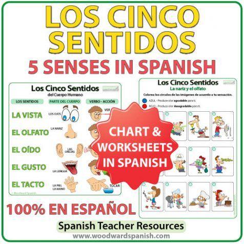 Los cinco sentidos en español. The five senses in Spanish - Worksheets and Summary Chart.