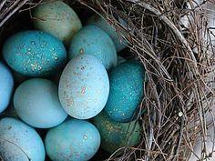 Волшебный способ окрашивания пасхальных яиц | Ярмарка Мастеров - ручная работа, handmade