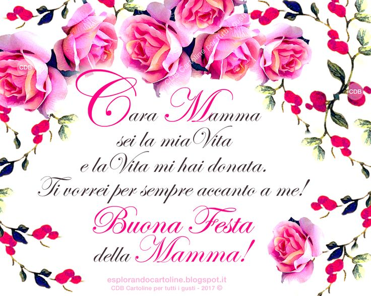 CDB CARTOLINE Compleanno per Tutti i Gusti! : ♡ Romantica Cartolina - Cara Mamma sei la mia Vita...