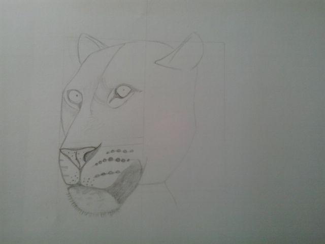 Eerste schets van mijn ontwerp als oefening. De hoogte van de ogen en breedte van de kop en de mond kloppen niet helemaal. Dit moet in mijn echte tekening beter. Verder ben ik tot nu toe wel tevreden met deze tekening.