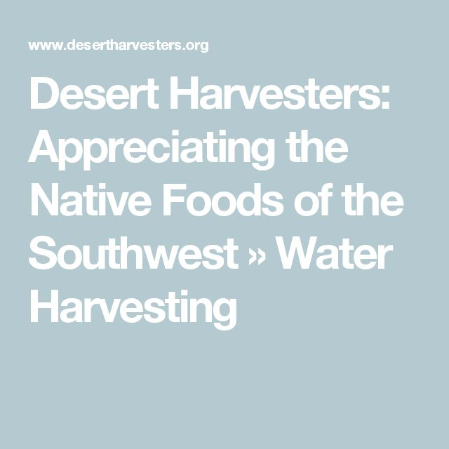 Desert Harvesters: Appreciating the Native Foods of the Southwest   » Water Harvesting