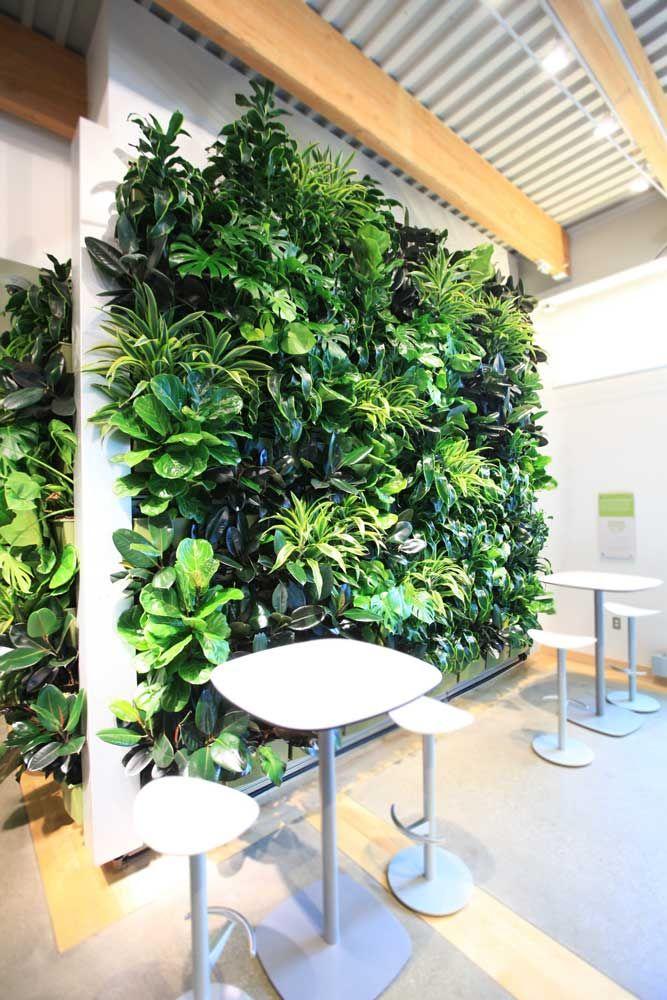 25 beste idee n over levende muren op pinterest muur tuinen mos wand en sappige muur - Outs idee open voor levende ...