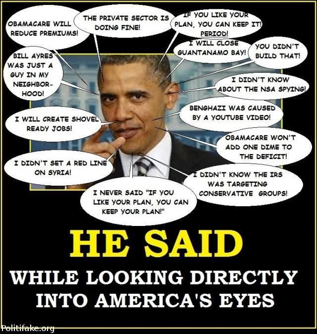 Executive Privilege Is Best Defined As: 105 Best Just More Lies Images On Pinterest