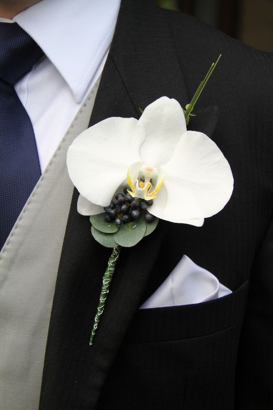 Flower Design Events: Phalaenopsis Boutonniere with Eucalyptus, Bear Grass & Viburnum Tinnus