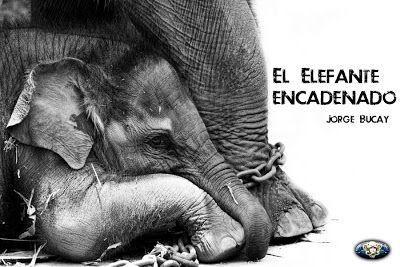 """Presente Consciente: """"El Elefante encadenado"""" - Jorge Bucay"""