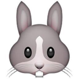 Rabbit Face Emoji (U+1F430/U+E52C)
