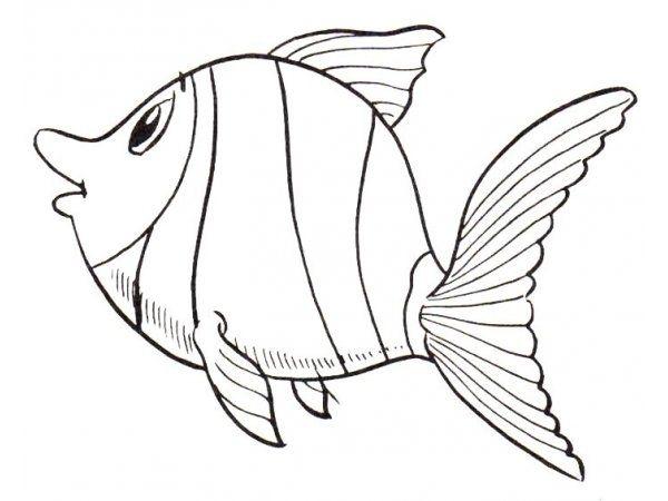Ten Gut Malvorlage Fisch Auffassung 2020 Malvorlage Fisch Meer Zeichnung Malvorlagen