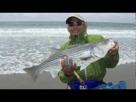 530 best images about fishing on pinterest halibut for Surf fishing northern california