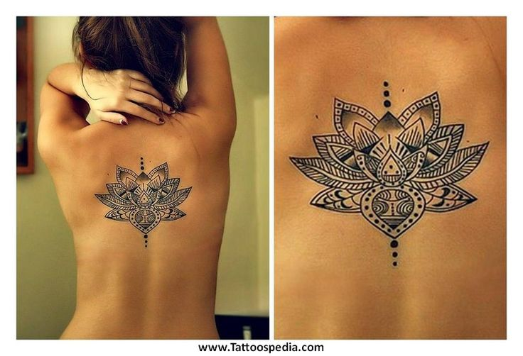 Tatouage Fleur de Lotus Dos Femme Nr6hj8w