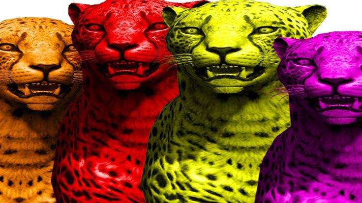 Cheetah Finger Family Songs | Nursery Rhymes for Children | Learn Colors...