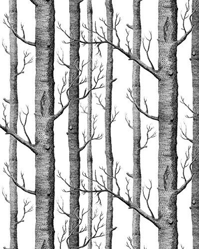 HaokHome® Modern Birch Tree Wallpaper Non Woven Forest Trunk Wall Paper Black&White - 57square Feets/roll HAOKHOME http://www.amazon.com/dp/B00RYQWCT0/ref=cm_sw_r_pi_dp_qpdrwb16WDHNW