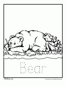 60 best Preschool Theme: Bears images on Pinterest