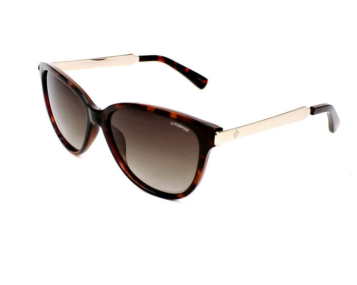 Shop online for Polaroid sunglasses PLD 5016/S LLY94  Havana - Silver print. Item in stock, 1 day shipping and 30 days money back guarantee
