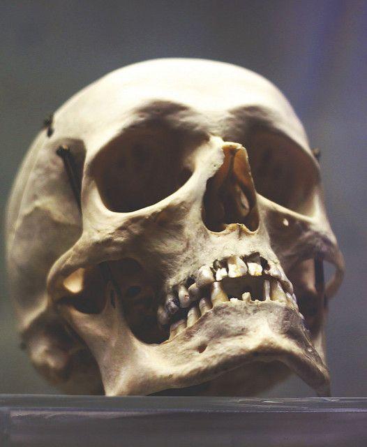 skull   Anastasia R   Flickr