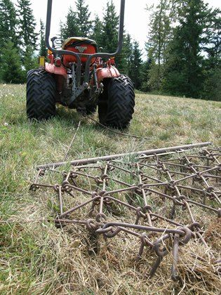 Pasture Tips to Control Weeds