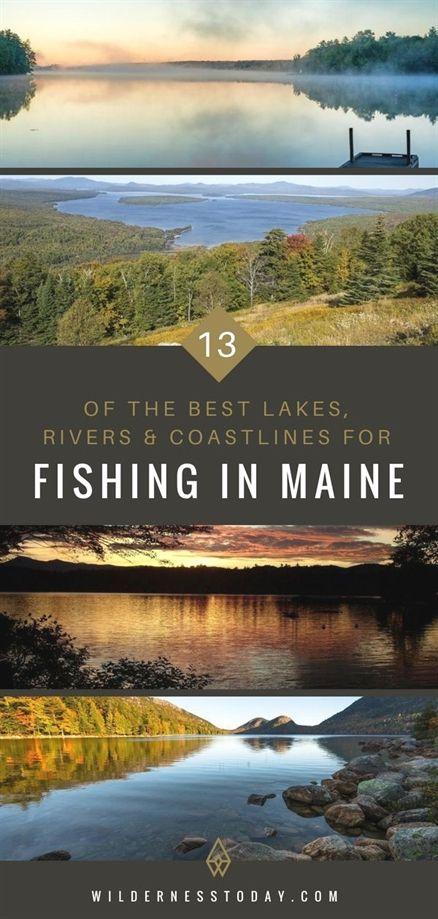 How To Catch Your Next Big Fish Best Fishing Fishing Trip Fishing Basics