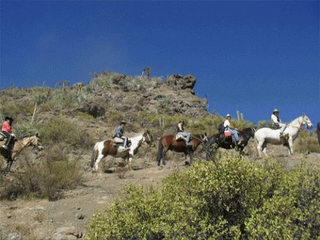 Take a short trip camping - Camping in the mountains gets you closer to nature and has its special delights. We offer from one night/2 days to four or five days going out from El Toyo in spring and early summer, or from the same or longer in the high Andes going out from Banos Morales. http://horseridingchile.com/blog/rides/short-trip