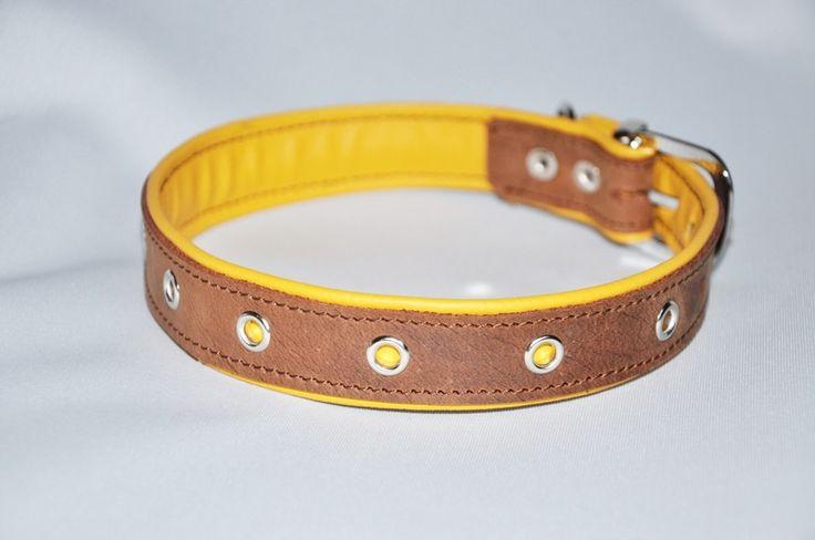 Hund Halsband Leder stark Hundehalsband schwarz von DDLHundehalsbaenderUndLeinen auf DaWanda.com