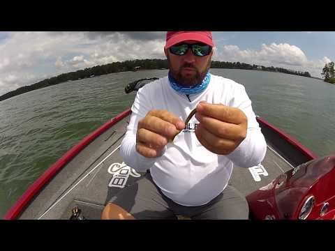Bio Spawn – The Drop Shot Rig And Summer Bassin « OutDoors Unlimited Magazine