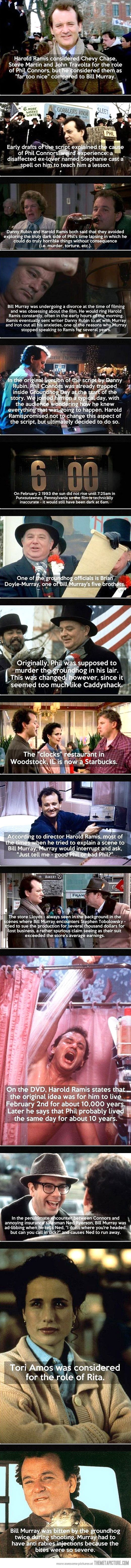 Groundhog Day Interesting Facts. If you have not seen this movie, you need to do so.