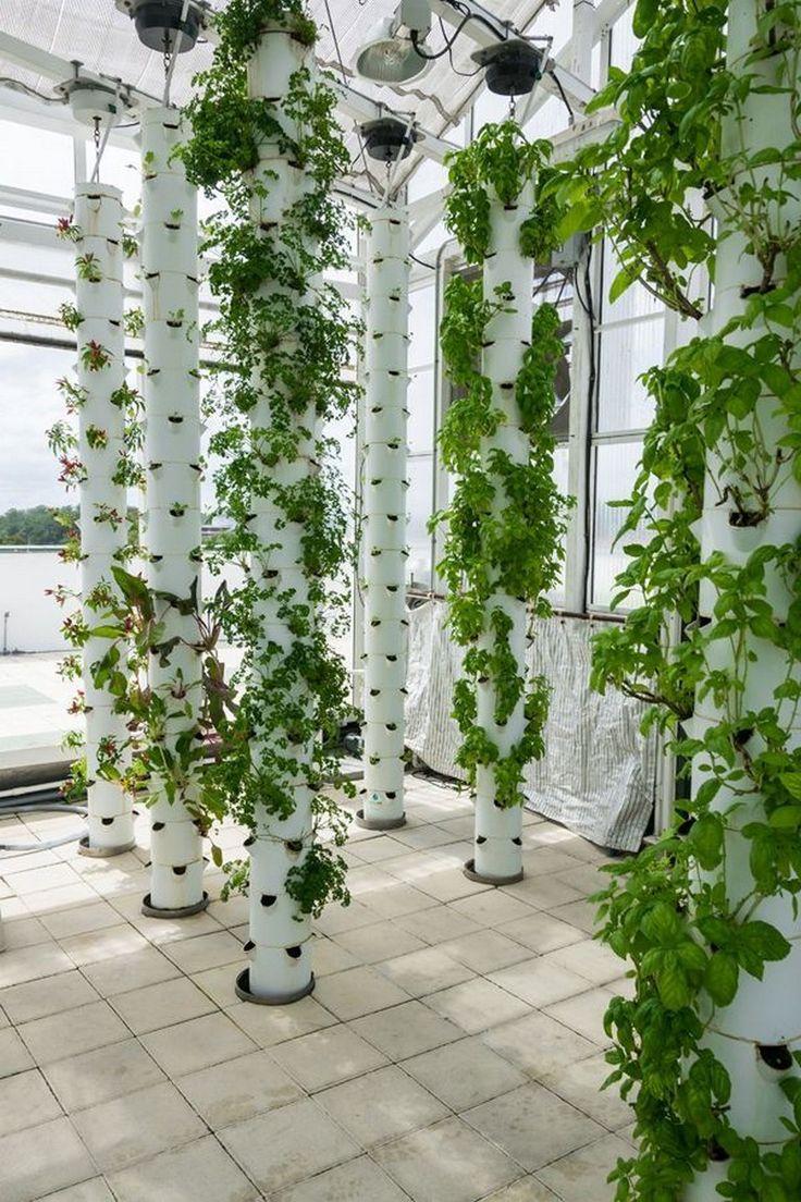 35+ Inspiring Hydroponic Gardening Ideas Hydroponic