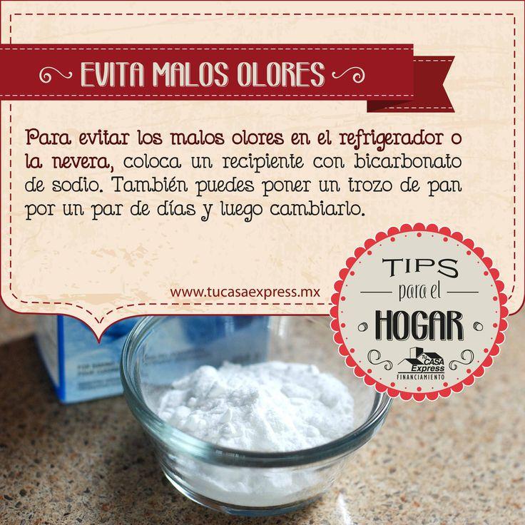 Para evitar los malos olores en el refrigerador o la - Como eliminar los malos olores ...
