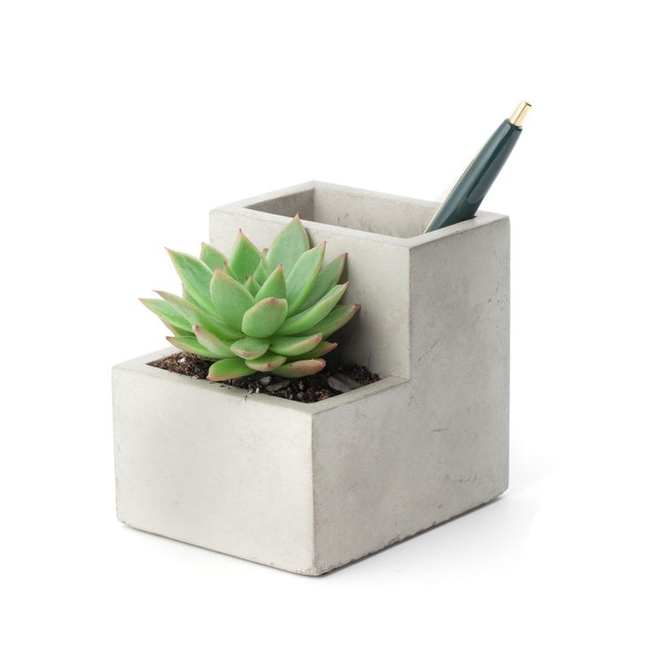 Small Concrete Desktop Planter
