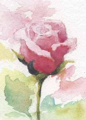 Floral painting Original rose watercolor painting ACEO