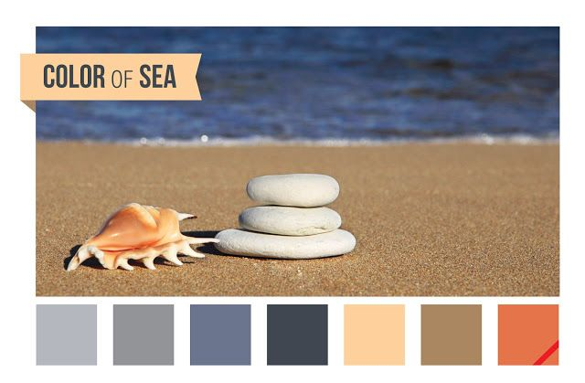 #Sea #shell #rock #sand #color #colorpalette inspiration