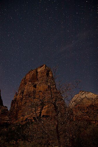 Night Sky, Zion National Park | Flickr - Photo Sharing!