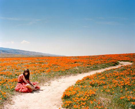 Orange / makes me wish it was summer again. photography by Amanda Friedman for Preen Magazine.