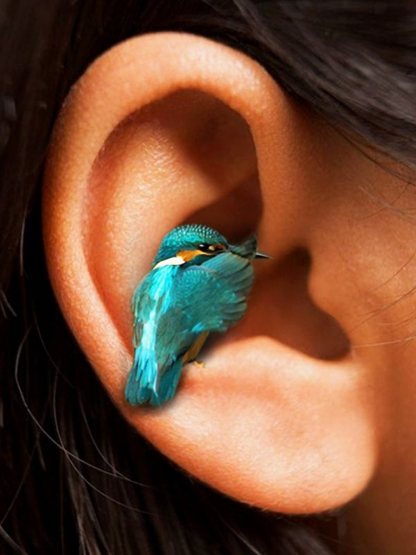 a little bird told me....awesome earring