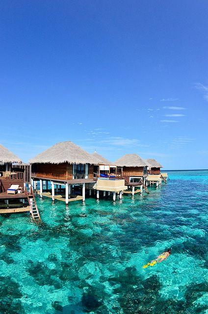 Maldives... Dream honeymoon destination -  For more wedding tips and ideas go to my blog. www.mrspurplerose.com