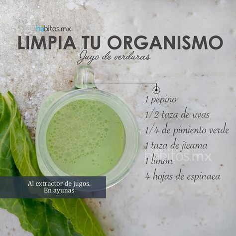 Hábitos Health Coaching   JUGO DE VERDURAS LIMPIA TU ORGANISMO