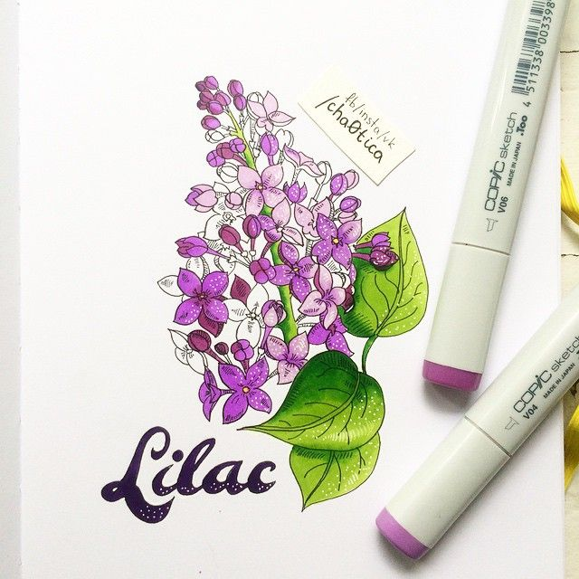 "439 Likes, 32 Comments - Lisa Krasnova (cha0tica) (@lisa.krasnova) on Instagram: ""Lilac for my mom  Недавно мама писала пост про любовь к сирени. Так что это для нее …"""