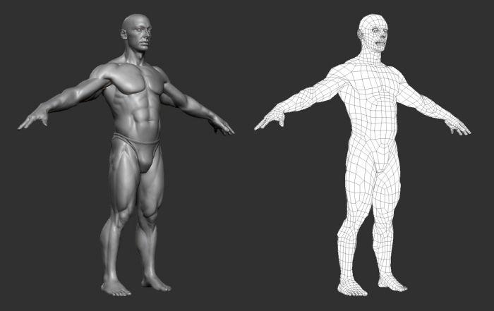 3D Male Figure by Adrian Spitsa at Coroflot.com