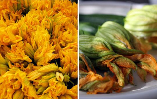 5 ways to cook squash blossoms, I will not be letting these babies go to waste this year.