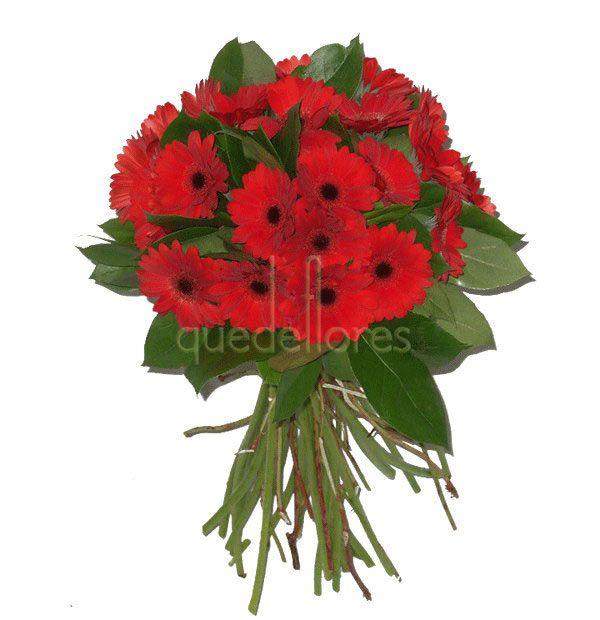 Bouquet de gerberas rojas - envío de flores a domicilio en toda la península - www.quedeflores.com