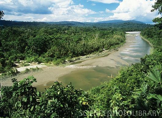 Napo river in Ecuador