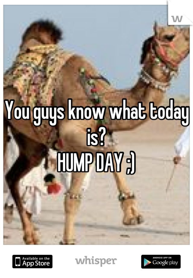 It's Hump Day quotes quote days of the week wednesday humpday hump day camel wednesday quotes camels happy wednesday