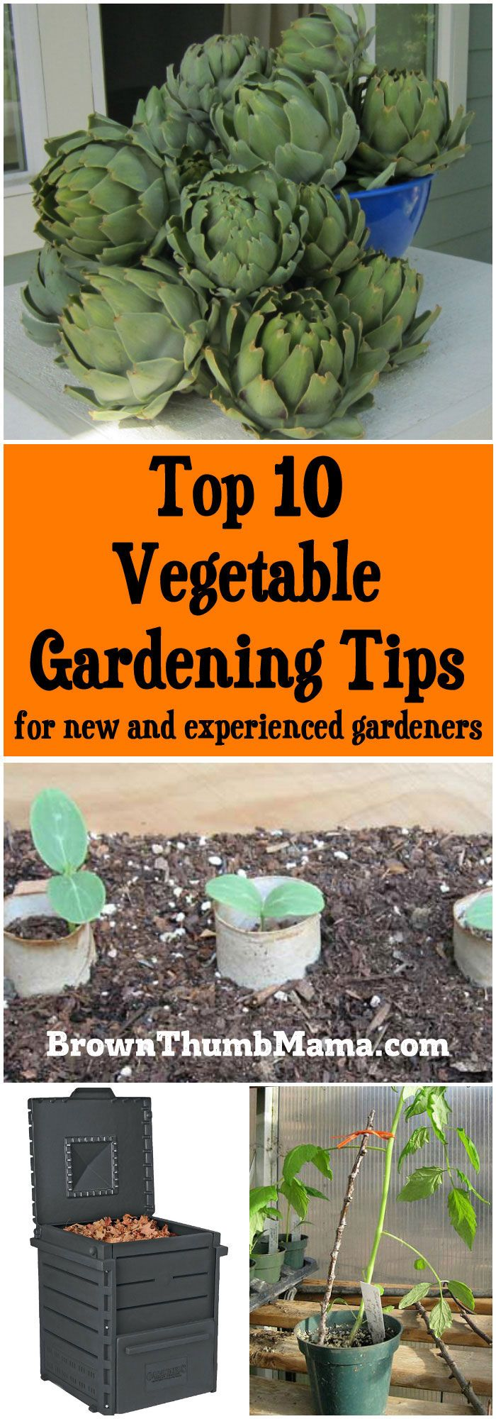 I love vegetable gardening, and as always, some years are better than others. Here are my top 10 vegetable gardening tips for new and experienced gardeners.