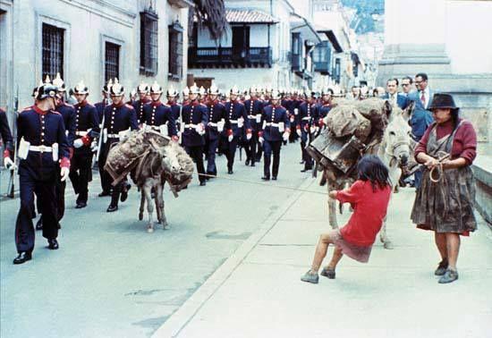 Santafé de Bogotá - Ocurrió en 1986, el burrito que quería desfilar en el cambio de guardia. - Contribución de Jairo Pedraza.