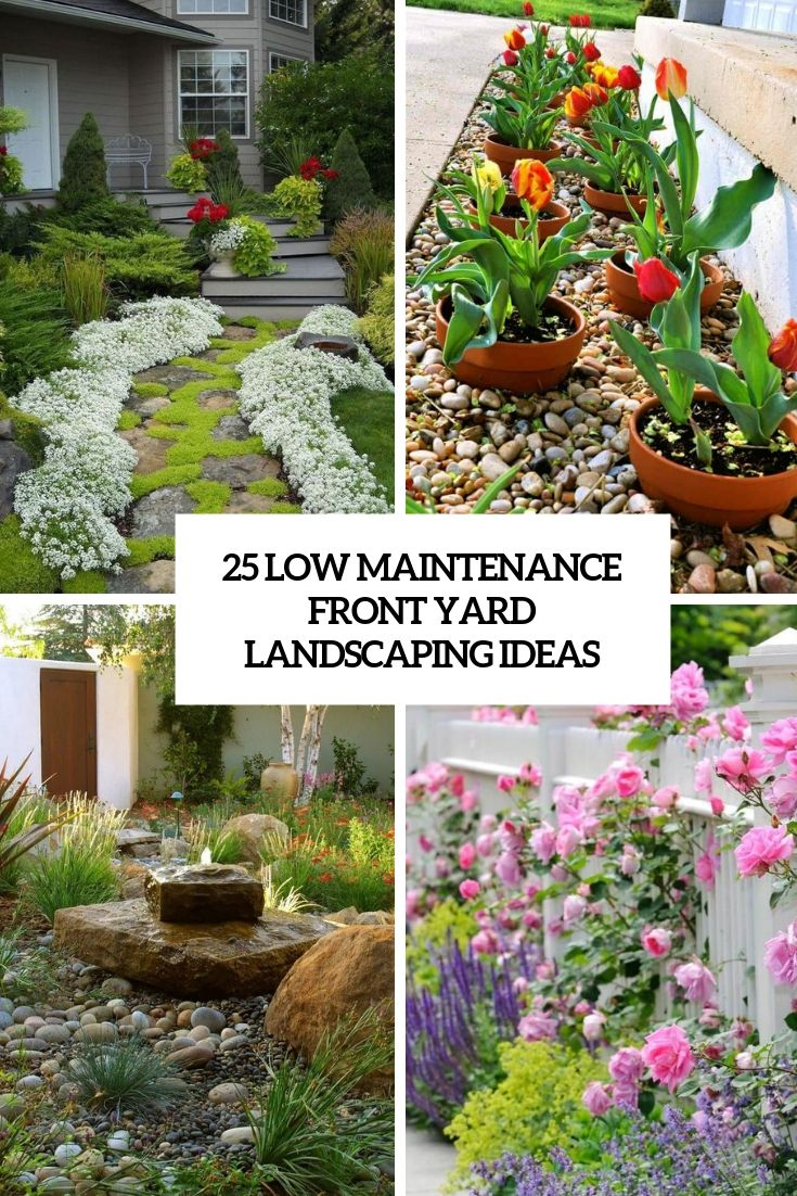 Low Maintenance Landscaping Ideas Small Front Yard Landscaping