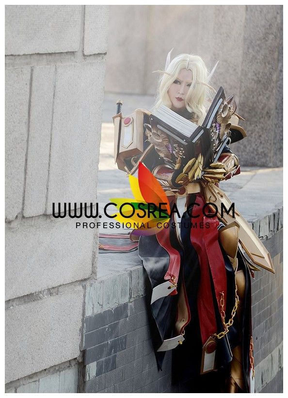 World of Wacraft Paladin T2 Cosplay Costume