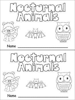 Nocturnal Animals Nonfiction Leveled Reader Level C Kindergarten Science