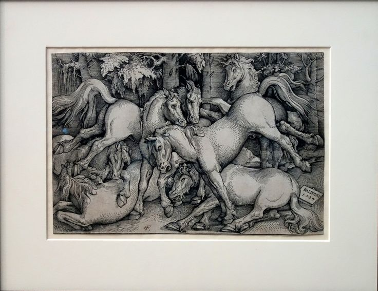 Kämpfende Hengste inmitten eine Herde (Hans Baldung-Grien, 1534)