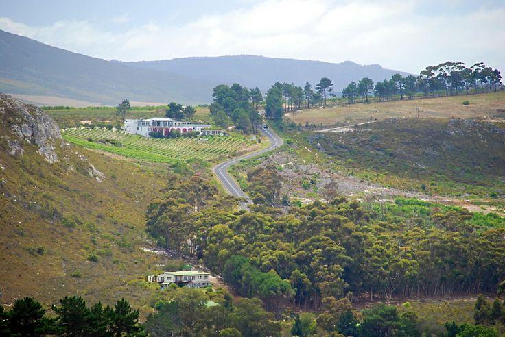 A landscape scene in the Hemel & Aarde Valley, Hermanus, South Africa.
